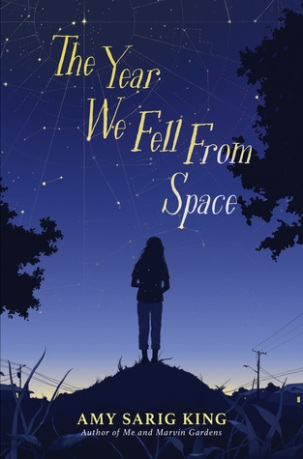 The Year We Fell From Space